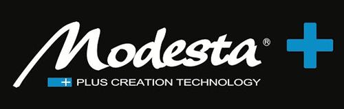 logo-modesta